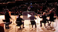 Balkan string quartet